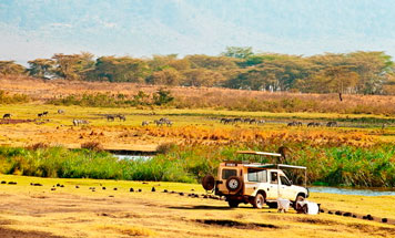 Tanzania Special Interest Tours